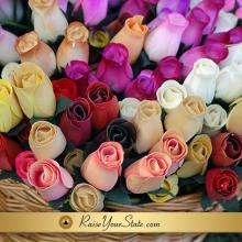 Roses & No Roses